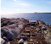 Atlantic Ocean rocky outcrop